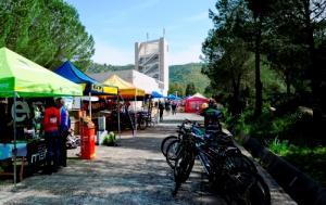 Bife Festival Sardegna 2015